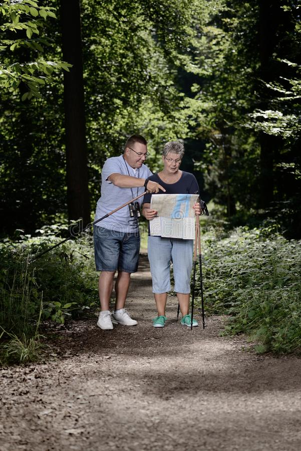 Seniors walking hiking strolling in forest leisure stock photo