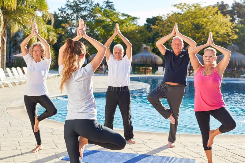 Seniors in the yoga class do an exercise. Seniors in the yoga class do the Vrksasana exercise on a wellness holiday royalty free stock photography