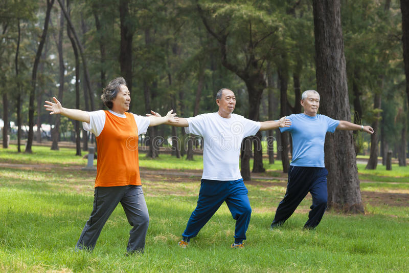 Seniory robi gimnastykom w parku obrazy royalty free
