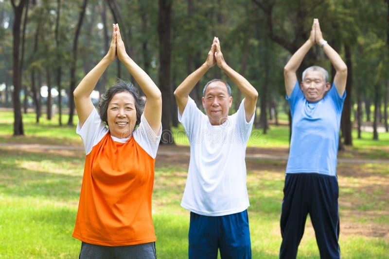 Seniory robi gimnastykom w parku obrazy stock