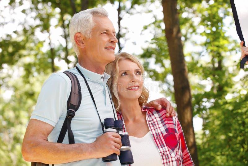 seniorzy aktywnych obrazy stock