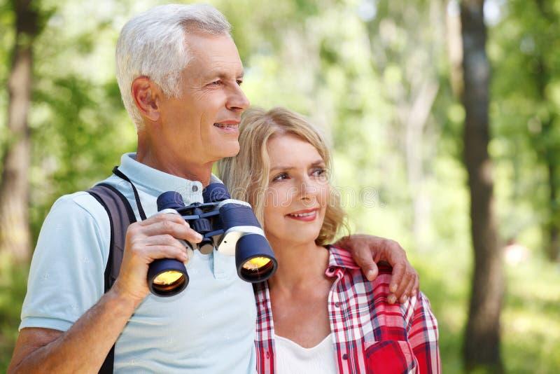 seniorzy aktywnych zdjęcia stock