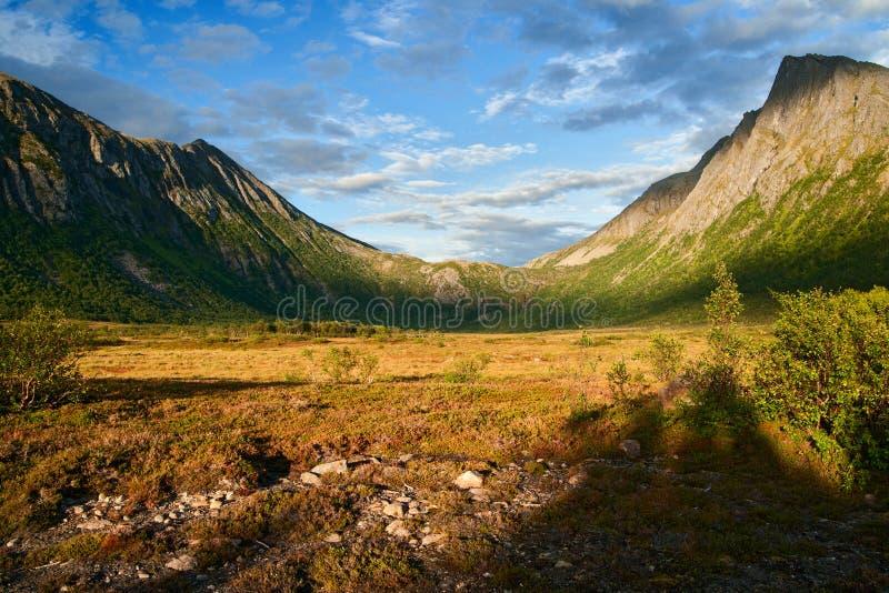 Senja wyspa w Norway fotografia royalty free