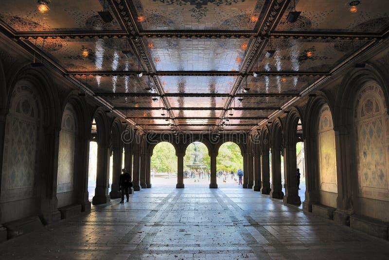 Senken Sie Durchführung an der Bethesda-Terrasse in Central Park stockbilder