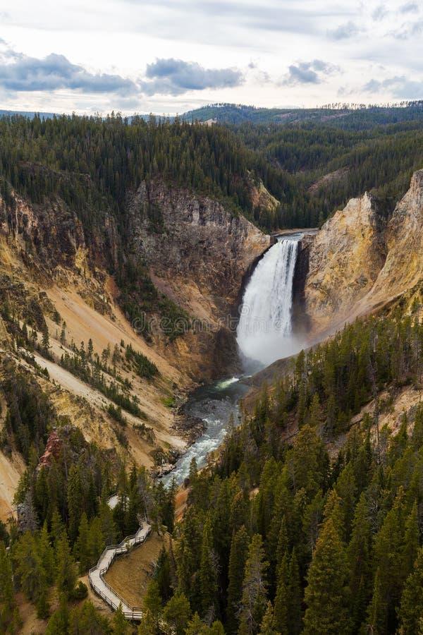 Senken Sie Fälle Grand Canyon s von Yellowstone Nationalpark lizenzfreie stockfotografie