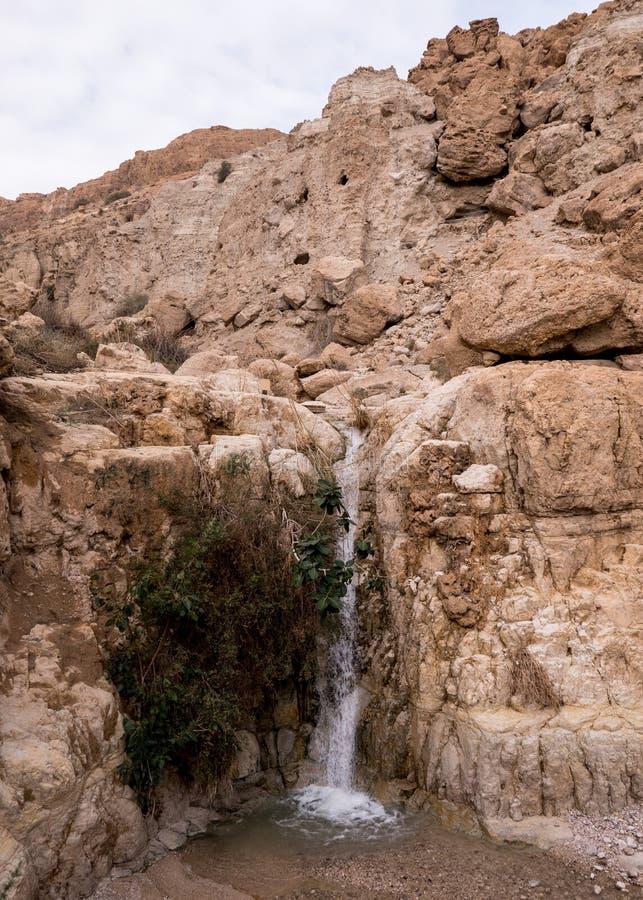 Senken Sie Wasserfall an David-` s Frühling stockfotos