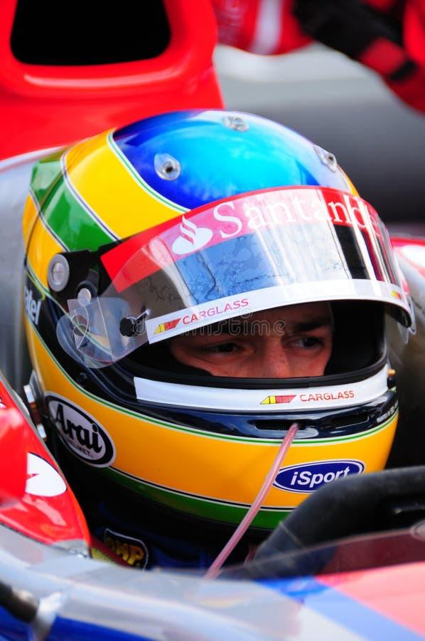 Senna de Bruno imagem de stock royalty free