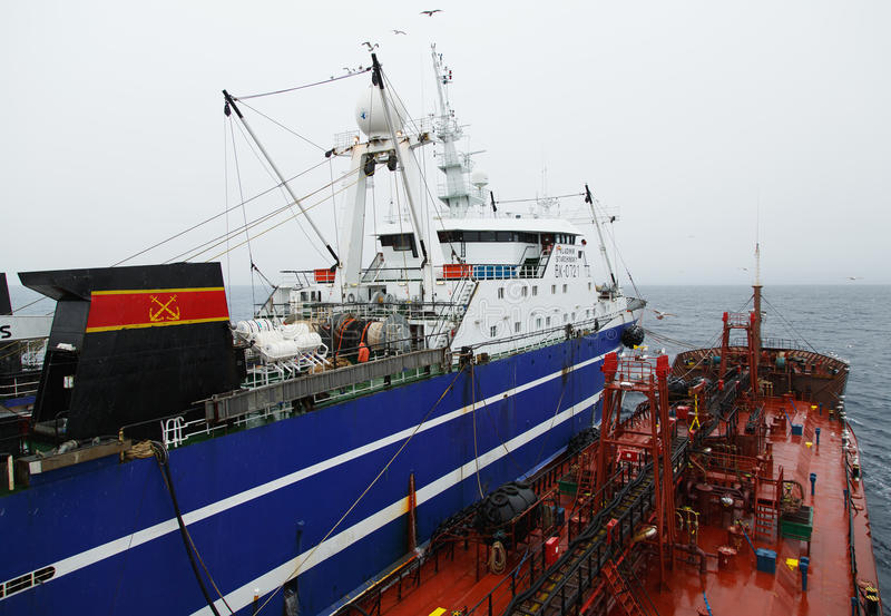 Senneur VLADIMIR STARZHINSKY de pêche et bateau-citerne Georgiy Froier photos libres de droits