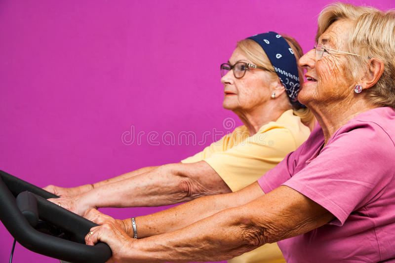 Senoir women working out on bicycles in gym royalty free stock images