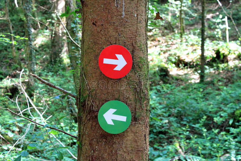 Sens de journal de forêt images stock