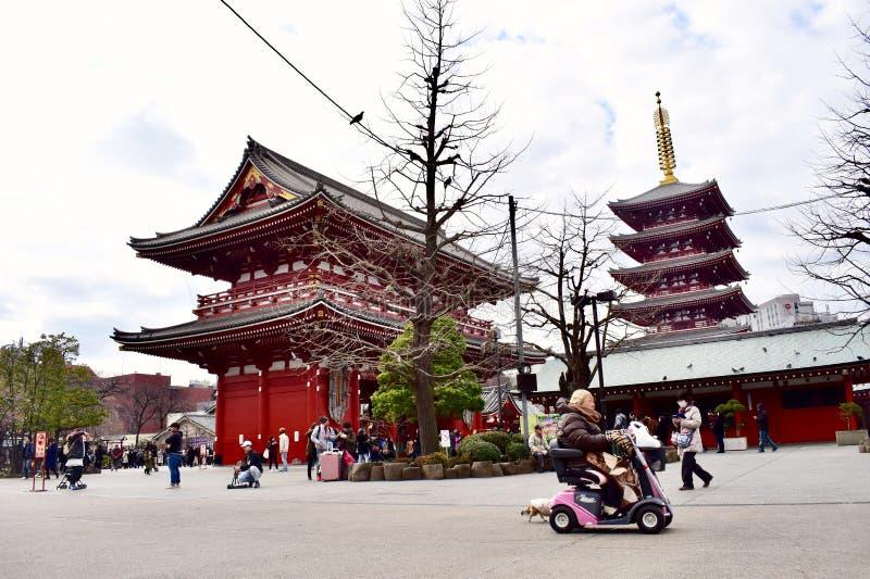 Senso籍寺庙在日本东京 库存图片