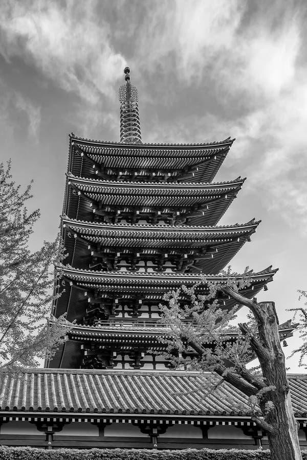 Senso籍寺庙的五层塔的黑白看法在东京,日本 免版税库存照片