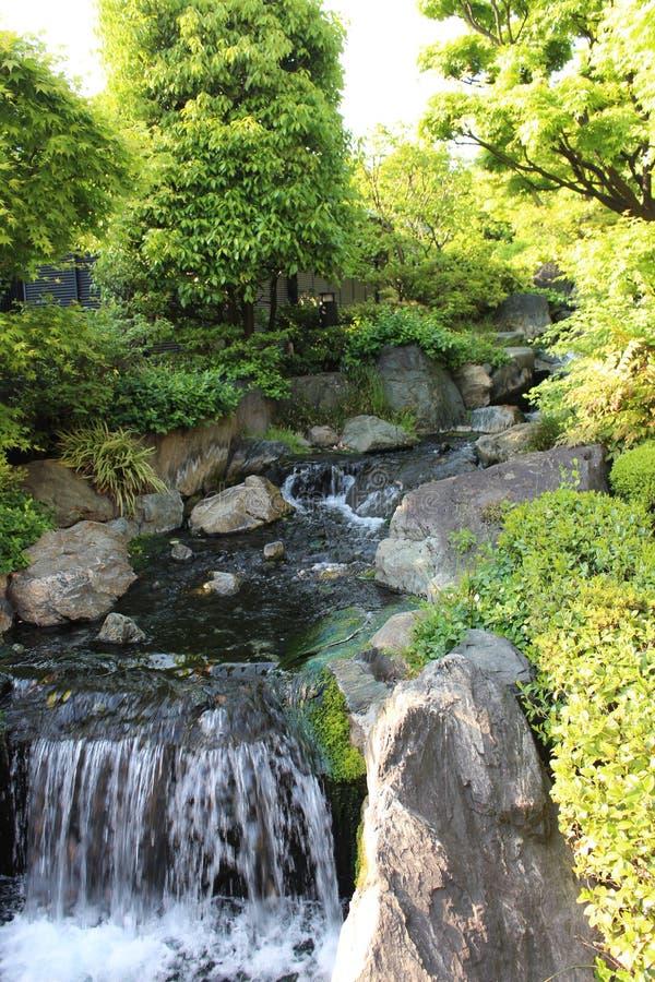 Sensoji寺庙瀑布 图库摄影