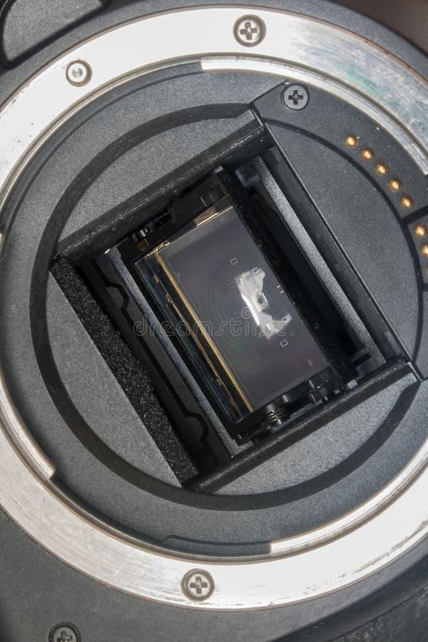 Sensore della macchina fotografica digitale e baionetta della lente fotografia stock libera da diritti