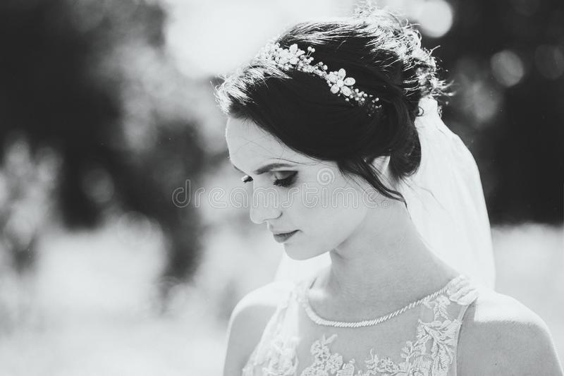 Sensual Black and white portrait of young bride. Sensual Black and white portrait of young brunette bride stock photo