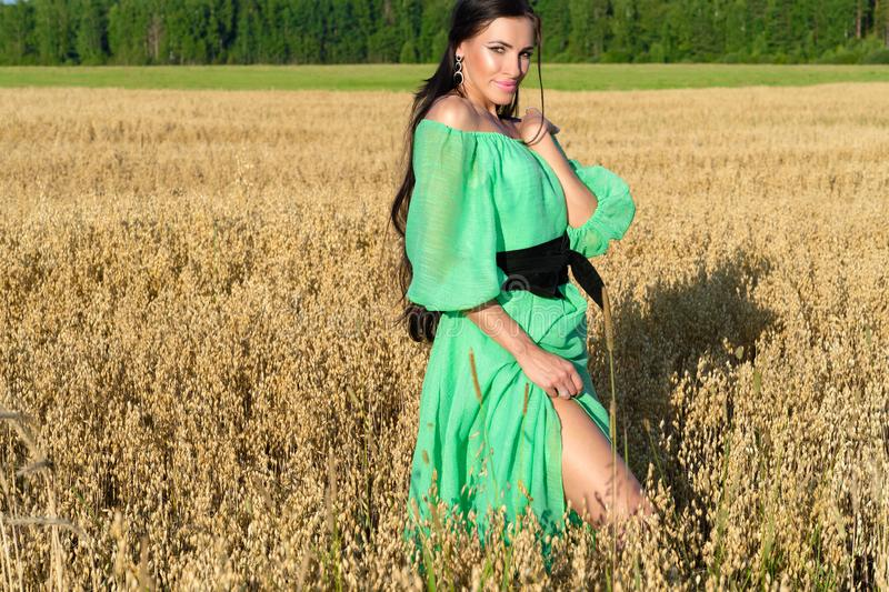 Sensual brunette woman stands in field of wheat in green dress stock images