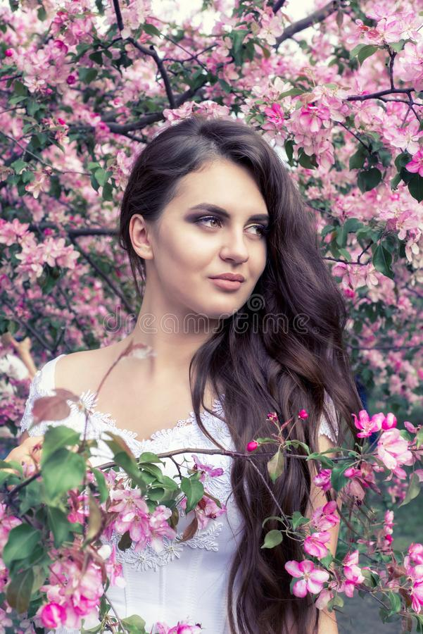 Sensual portrait of a spring woman, beautiful face, close up on blue eyes, female enjoying cherry blossom royalty free stock photos