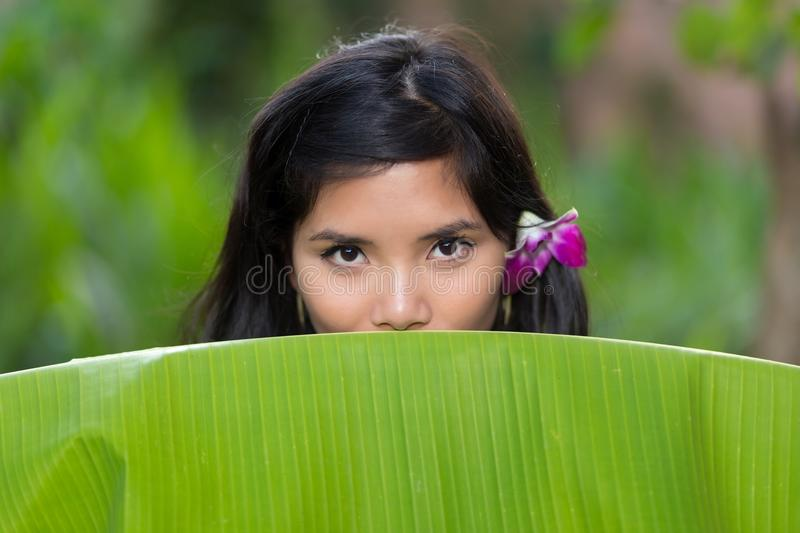 Sensual portrait of a young Vietnamese woman stock photography
