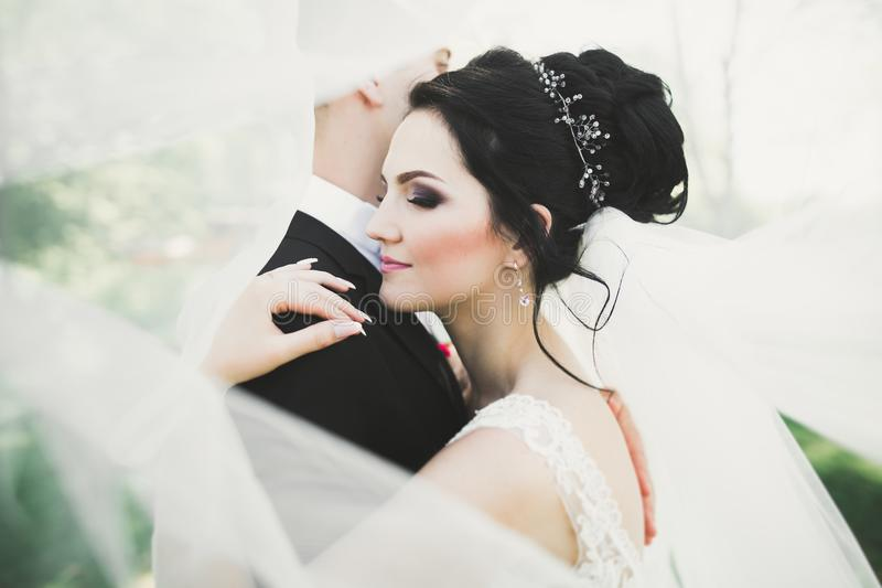 Sensual portrait of a young wedding couple. Outdoor stock photo