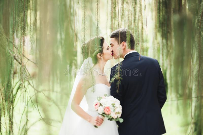Sensual portrait of a young wedding couple. Outdoor.  royalty free stock image