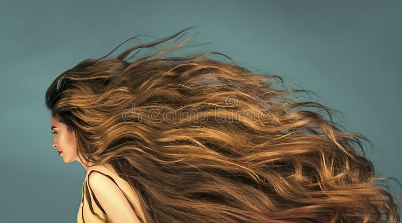 Download Sensual Woman. Hairdresser Salon And Barber. Stock Photo - Image of curly, fashion: 118110360