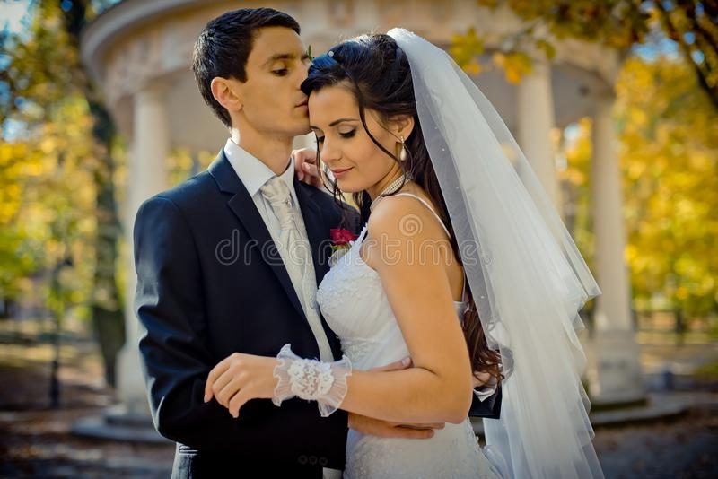 Sensual wedding outdoor portrait. The stylish groom is tenderly hugging and kissing his gorgeous lover in the forehead royalty free stock photos