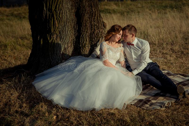 Sensual wedding portrait. Attractive smiling newlyweds are tenderly hugging while sitting on the plaid under the tree. stock image