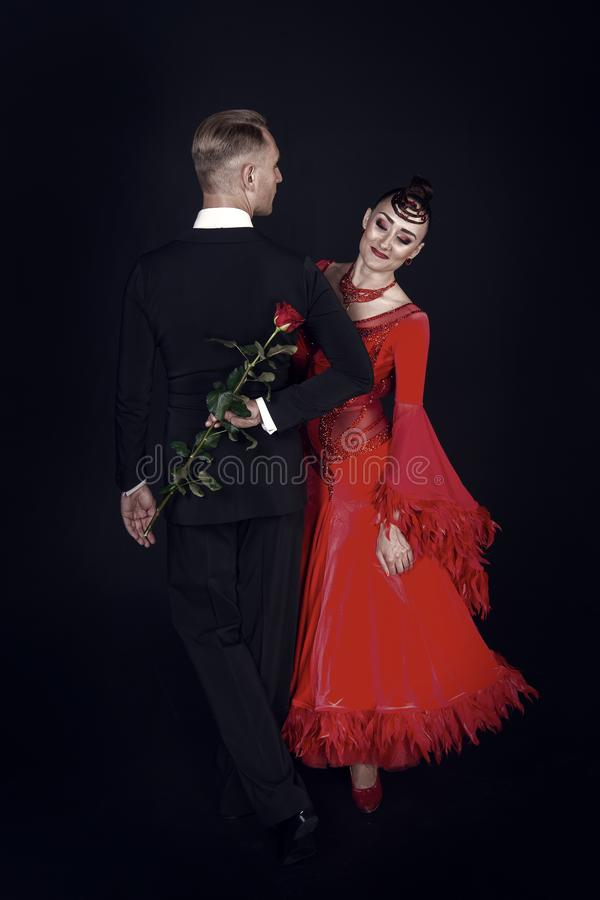 Sensual woman and man dance with rose flower. Woman in red dress and macho in tuxedo. Couple of ballroom dancers in love. Sensual women and men dance with rose royalty free stock photos