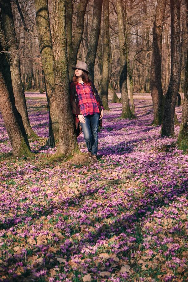 Blooming nature, crocuses, young traveler. Sensual young lady with the sun in her red hair, standing among blooming nature, enjoying aroma of purple crocuses in stock images