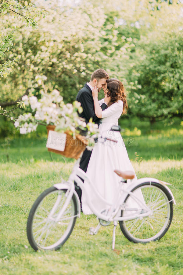 Sensual young newlywed couple holding each other in park. Bicycle with wedding decoration on foreground royalty free stock photo
