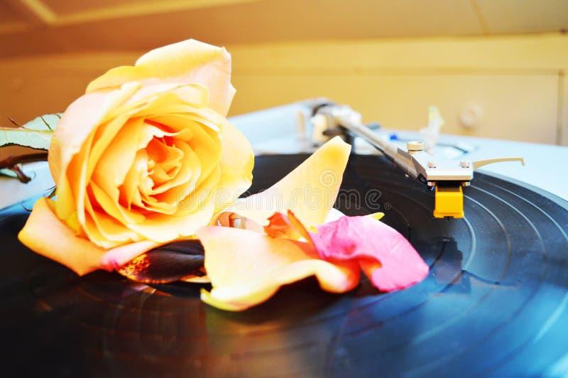 Sensualidade e música fotos de stock royalty free