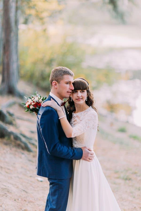 Sensueel ogenblik van romantisch onlangs gehuwd paar Omhels in het bos van de de herfstpijnboom stock fotografie
