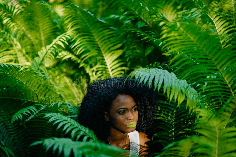 Sensueel portret van het tedere schitterende Afrikaanse meisje met groene oogschaduw en lippenstift die opzij terwijl binnen het  stock afbeelding