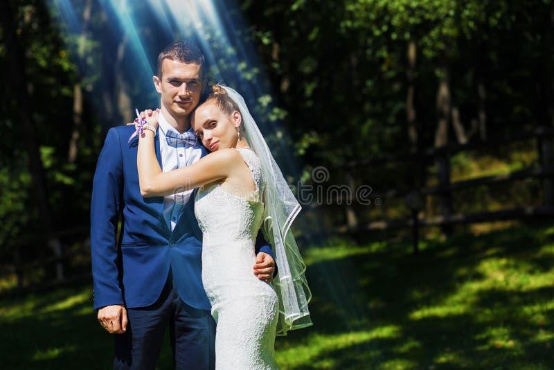 Sensuele bruid die bruidegom omhelzen stock foto's