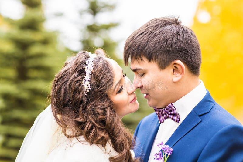Sensuele mooie jonge bruid en knappe bruidegom in het close-up van het de herfstpark stock fotografie