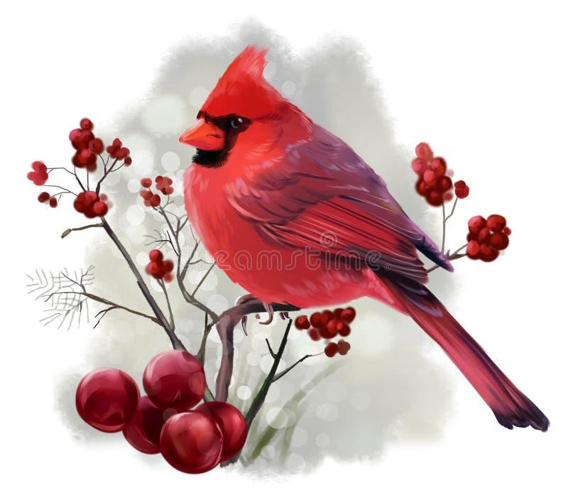 Sentada cardinal del pájaro en una rama stock de ilustración
