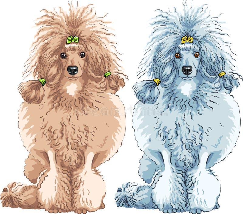 sentada de la casta del caniche del perro del vector ilustración del vector