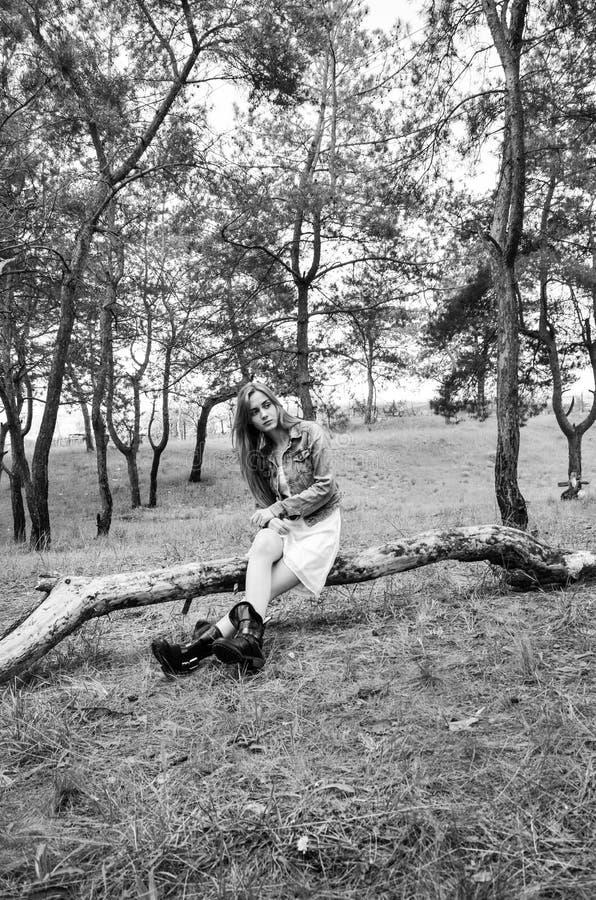 Sentada modelo atractiva en el registro de madera y mirada de la cámara con mirada del empollamiento fotos de archivo libres de regalías