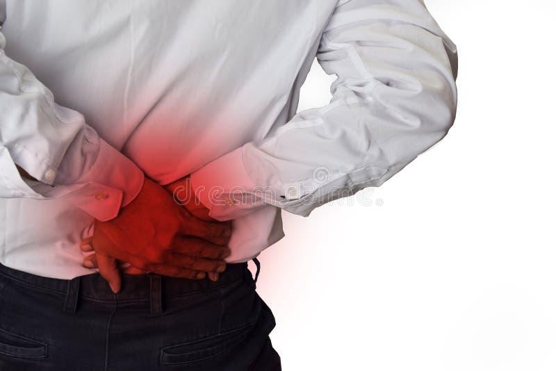 Sente a dor no pequeno da parte traseira Dor nas costas, ferimento físico foto de stock