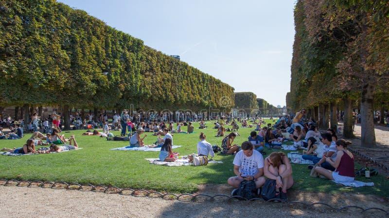 Sente-se e relaxe-se em jardins de Luxemburgo em um dia ensolarado e quente do verão, Paris, França imagem de stock