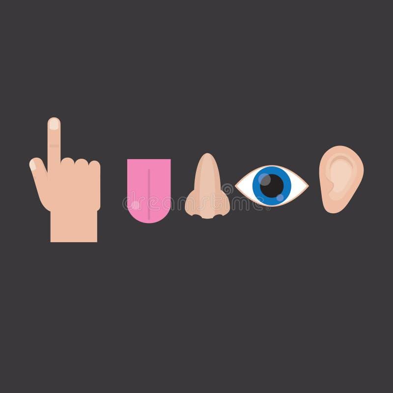 Sentidos: vista, toque, cheiro, audição, gosto Sentidos no estilo liso no fundo cinzento Sentidos dos ícones ilustração stock