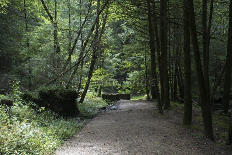 Sentier de randonnée bien maintenu photos libres de droits