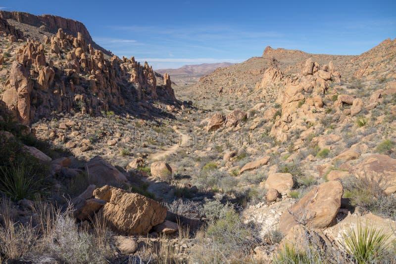 Sentier de randonnée en collines de vigne, parc national de grande courbure, le Texas image libre de droits