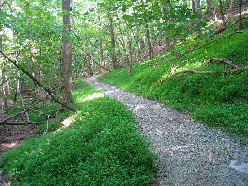 Sentier de randonnée immaculé image stock