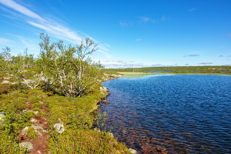 Sentier de randonnée par un lac sur une bruyère de montagne photographie stock libre de droits