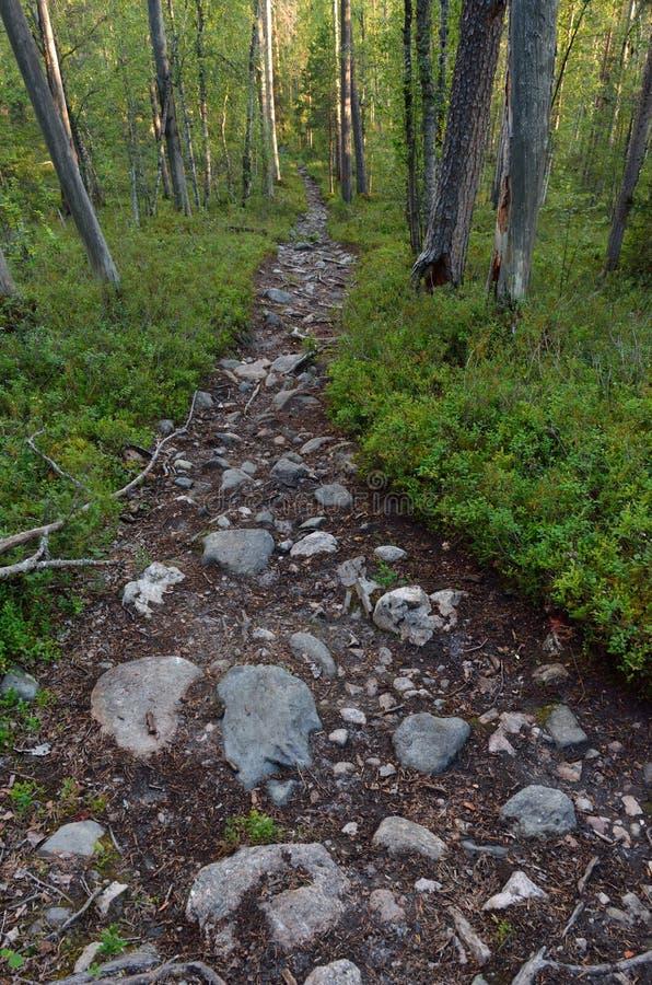 Sentier de randonnée pierreux photos libres de droits