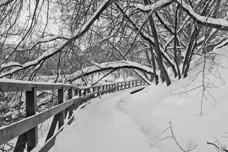Sentier piéton à côté de barrière en parc d'hiver noir et blanc photo stock