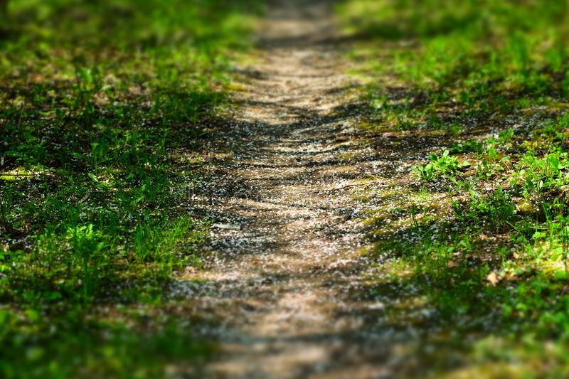 Sentier piéton image stock