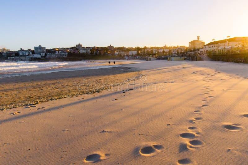 Sentier piéton d'or sur le sable photos libres de droits