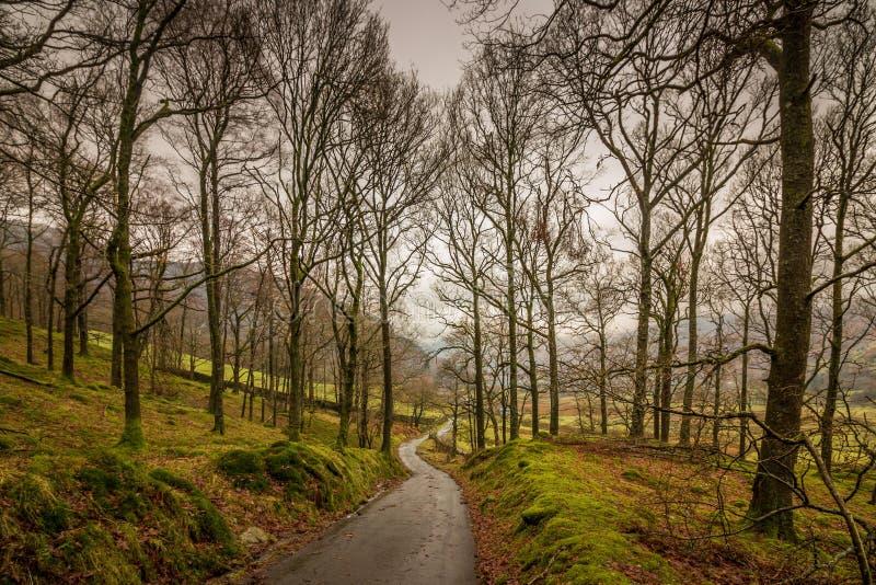 Sentier piéton de vallée de Langdale photos libres de droits